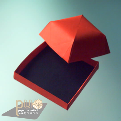 dome-like cake box, without flower