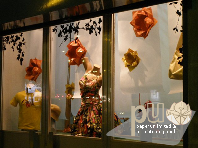 """""""my"""" lotus at one of the shop windows"""