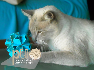 my cat and the little turtle kusudama